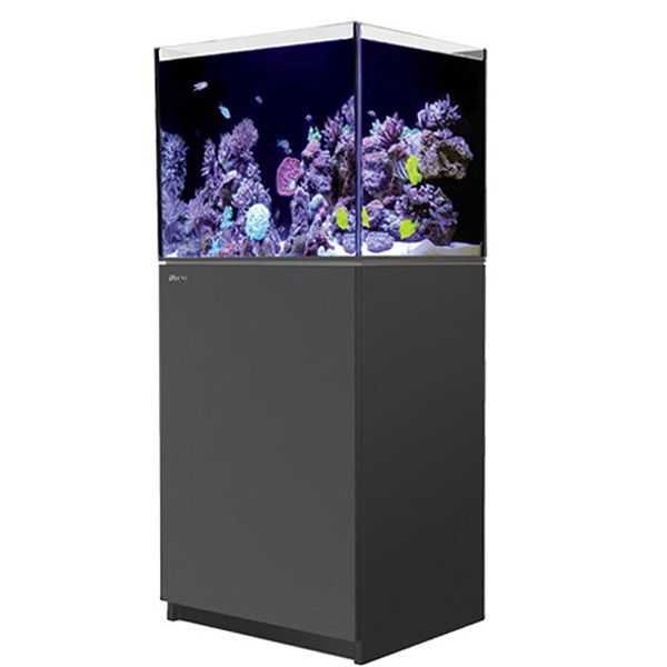 Red Sea Reefer 170 - Black