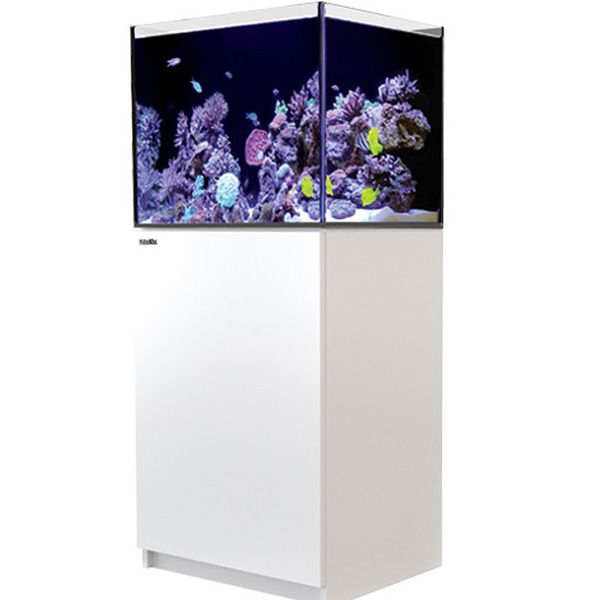 Red Sea Reefer 170 - White