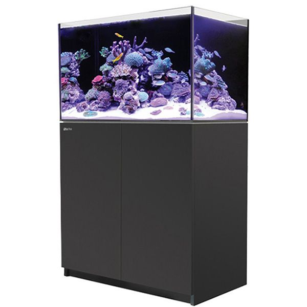 Red Sea Reefer 250 - Black
