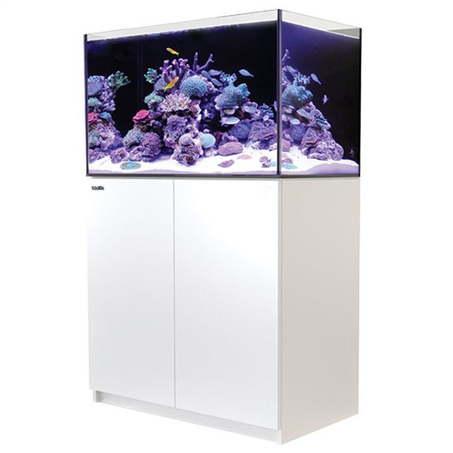 Red Sea Reefer 250 - White