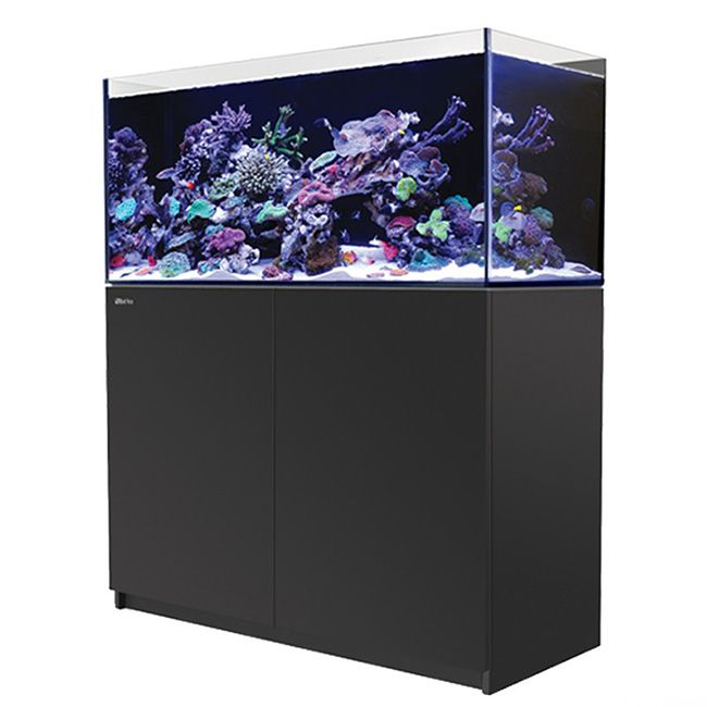 Red Sea Reefer 350 - Black