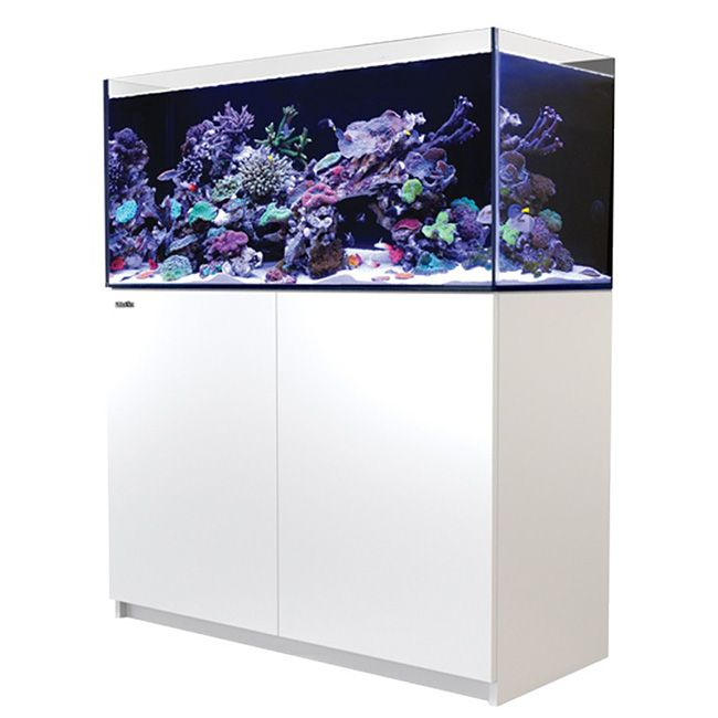 Red Sea Reefer 350 - White