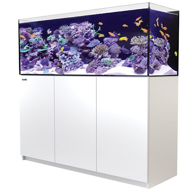 Red Sea Reefer 450 - White